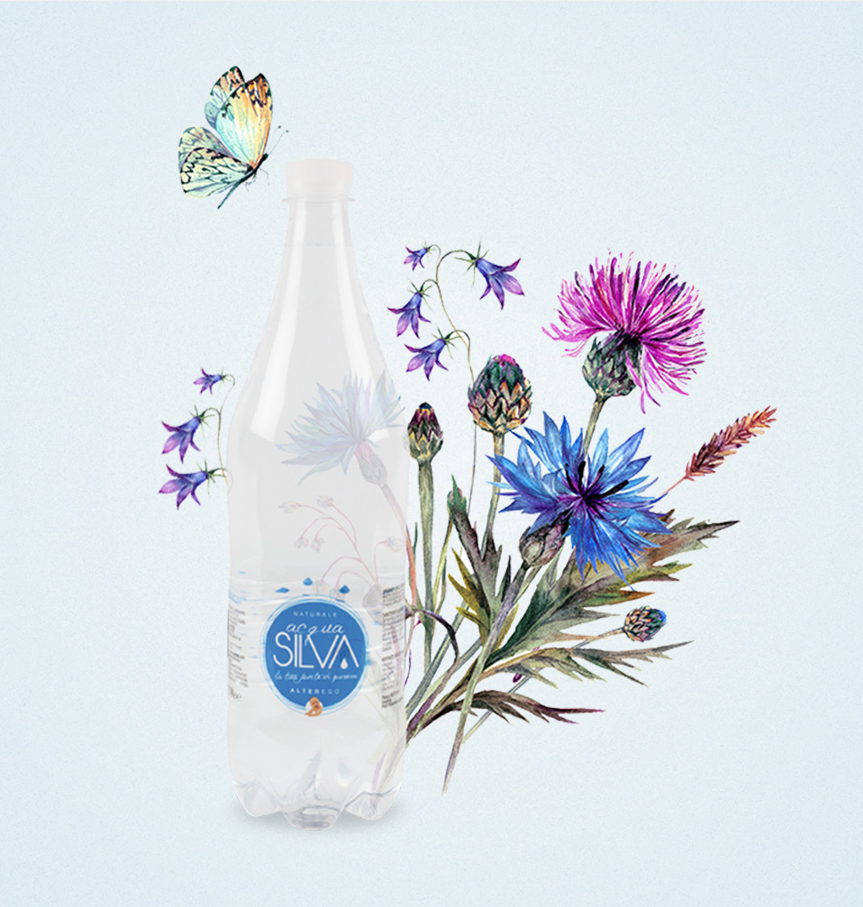 Acqua Silva website